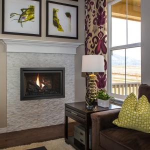 Fireplace Xtrordinair - 564 Space Saver Clean Face Gas Fireplace