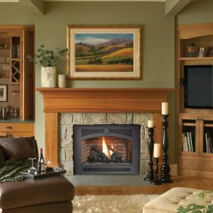 Fireplace Xtrordinair 564 SS Gas Fireplace with Legacy Face in Black Painted and Common Brick Firebrick