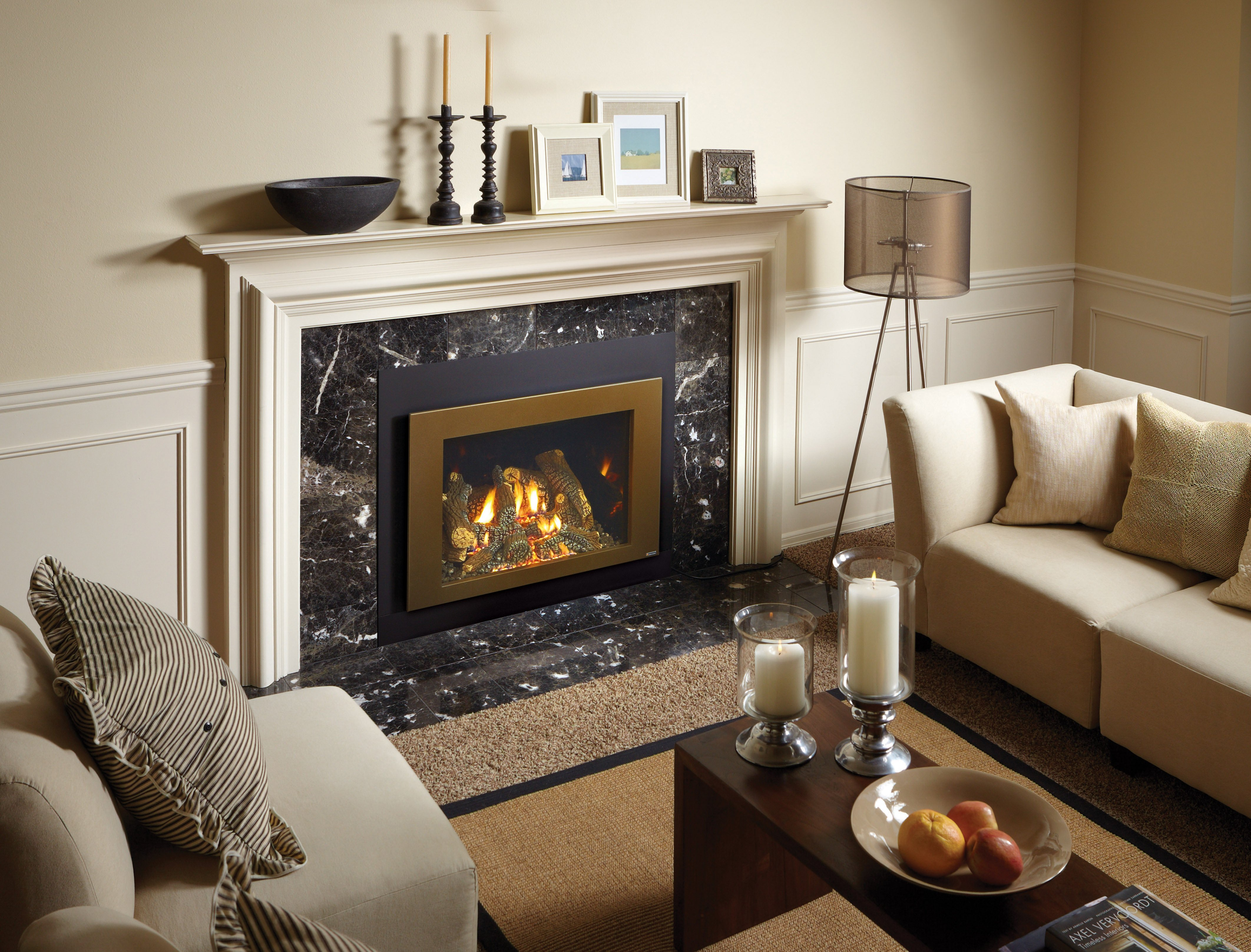 616 GSR Gas Fireplace Insert