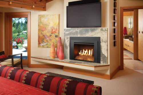FPX 616 Diamond-Fyre™ GSR Gas Fireplace Insert