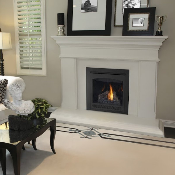 Ascent 30 gas fireplace