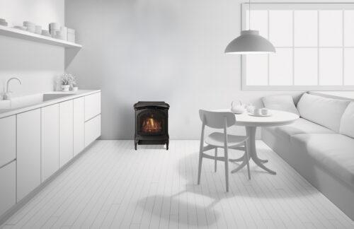 Heat & Glo Tiara Petite Gas Stove