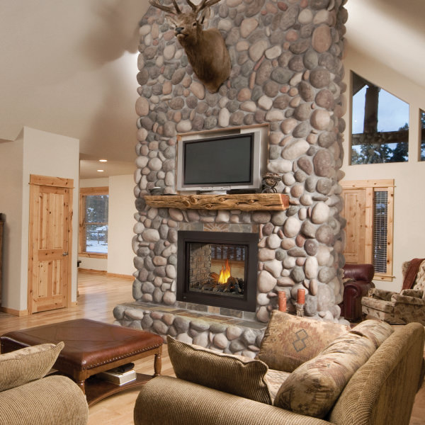 Ascent Multi-View gas fireplace