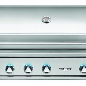 "Delta Heat 38"" Outdoor Gas Grill"