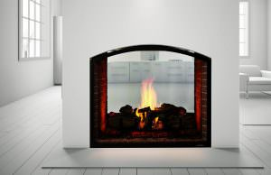 Escape See-Through gas fireplace