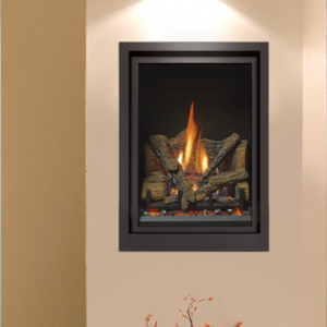 ProBuilder 24 Clean Face gas fireplace