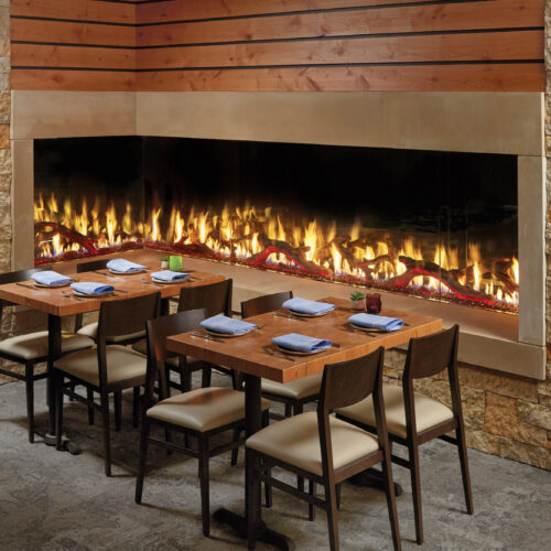 DaVinci Custom L Fireplace