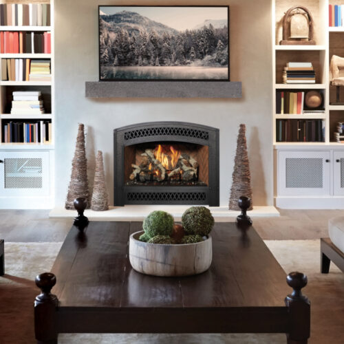 Fireplace Xtrordinair 564 TV 35K Gas Fireplace 2